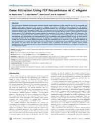 Plos Genetics : Gene Activation Using Fl... by Kim, Stuart K.