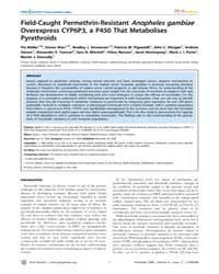 Plos Genetics : Field-caught Permethrin-... by Stern, David L.