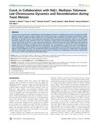Plos Genetics : Csm4, in Collaboration w... by Lichten, Michael