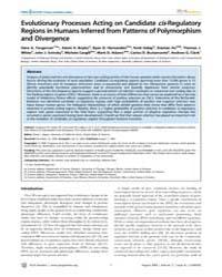 Plos Genetics : Evolutionary Processes A... by Begun, David J.