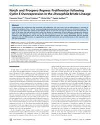 Plos Genetics : Notch and Prospero Repre... by Cohen-fix, Orna