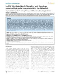 Plos Genetics : Hnrnp I Inhibits Notch S... by Beier, David R.