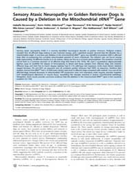 Plos Genetics : Sensory Ataxic Neuropath... by Georges, Michel