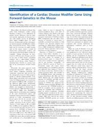 Plos Genetics : Identification of a Card... by Beier, David R.