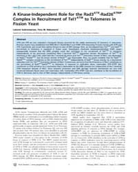 Plos Genetics : a Kinase-independent Rol... by Copenhaver, Gregory P.