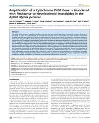 Plos Genetics : Amplification of a Cytoc... by Stern, David L.