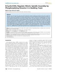 Plos Genetics : B-cyclin, Volume 6 by Biggins, Sue