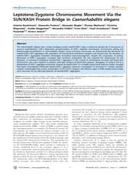 Plos Genetics : Leptotene, Volume 6 by Colaiacovo, Monica