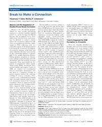 Plos Genetics : Break to Make a Connecti... by Copenhaver, Gregory P.