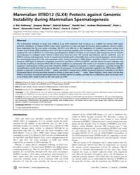 Plos Genetics : Mammalian Btbd12 Slx4 Pr... by Hawley, R. Scott