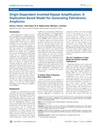 Plos Genetics : Origin-dependent Inverte... by Rosenberg, Susan, M.