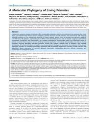 Plos Genetics : a Molecular Phylogeny of... by Brosius, Jrgen