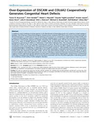 Plos Genetics : Over-expression of Dscam... by Barsh, Gregory S.