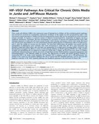 Plos Genetics : Hif–vegf Pathways Are Cr... by Avraham, Karen B.