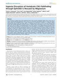 Plos Genetics : Hypoxia Disruption of Ve... by Penn, Anna