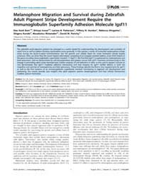 Plos Genetics : Melanophore Migration an... by Barsh, Gregory S.