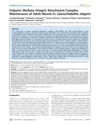 Plos Genetics : Calpains Mediate Integri... by Cox, Gregory A.