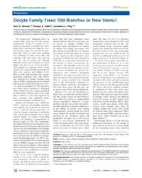 Plos Genetics : Oocyte Family Trees ; Ol... by Barsh, Gregory S.