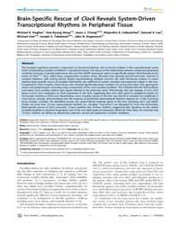 Plos Genetics : Brain-specific Rescue of... by Kramer, Achim