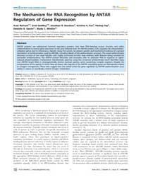 Plos Genetics : the Mechanism for Rna Re... by Burkholder, William F.