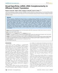 Plos Genetics : Broad-specificity Mrna–r... by Hughes, Diarmaid
