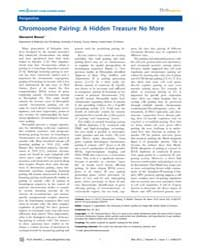 Plos Genetics : Chromosome Pairing ; a H... by Copenhaver, Gregory P.