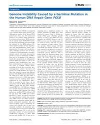 Plos Genetics : Genome Instability Cause... by Rosenberg, Susan M.