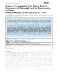 Plos Genetics : Regions of Homozygosity ... by Visscher, Peter M.