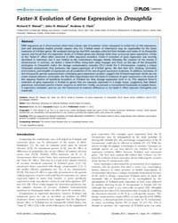 Plos Genetics : Faster-x Evolution of Ge... by Bachtrog, Doris