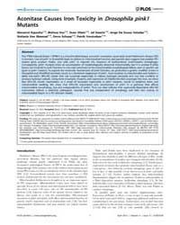 Plos Genetics : Aconitase Causes Iron To... by Lu, Bingwei
