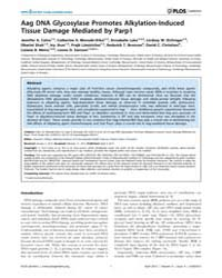 Plos Genetics : Aag Dna Glycosylase Prom... by Wilson, Samuel H.