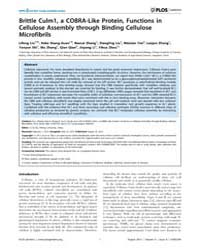 Plos Genetics : Brittle Culm1, a Cobra-l... by Qu, Li-jia