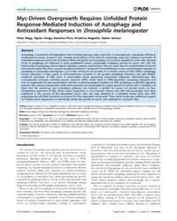 Plos Genetics : Myc-driven Overgrowth Re... by Edgar, Bruce