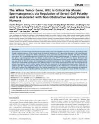 Plos Genetics : the Wilms Tumor Gene, Wt... by Hastie, Nicholas