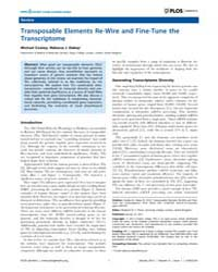 Plos Genetics : Transposable Elements Re... by Fisher, Elizabeth M. C.