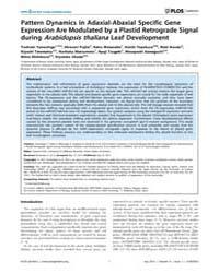 Plos Genetics : Pattern Dynamics in Adax... by Chen, Xuemei