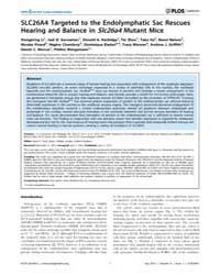 Plos Genetics : Slc26A4 Targeted to the ... by Steel, Karen P.