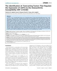 Plos Genetics : the Identification of Tr... by Lories, Rik