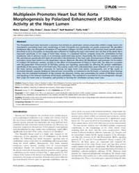 Plos Genetics : Multiplexin Promotes Hea... by Rulifson, Eric