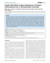 Plos Genetics : Fragile Dna Motifs Trigg... by Lichten, Michael
