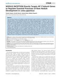 Plos Genetics : Nodule Inception Directl... by McDowell, John M.