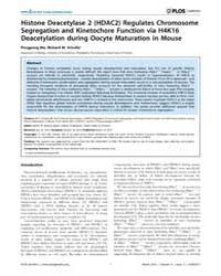 Plos Genetics : Histone Deacetylase 2 Hd... by Matzuk, Martin M.