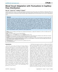 Plos One : Blood Vessel Adaptation with ... by Aegerter, Christof Markus