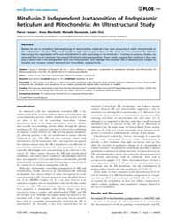 Plos One : Mitofusin-2 Independent Juxta... by Der Goot, F. Gisou, Van
