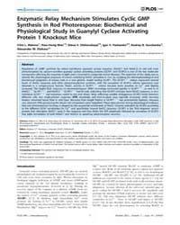 Plos One : Enzymatic Relay Mechanism Sti... by Neuhauss, Stephan C.F.