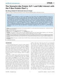 Plos One : the Stomatin-like Protein Slp... by Hatzfeld, Mechthild
