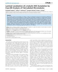 Plos One : Luminal Localization of A-tub... by Frischknecht, Friedrich