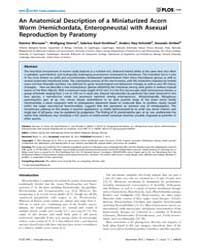 Plos One : an Anatomical Description of ... by Hejnol, Andreas