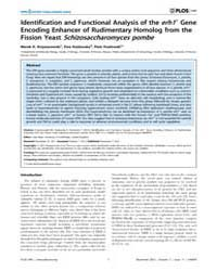 Plos One : Identification and Functional... by Mata, Juan