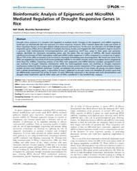 Plos One : Bioinformatic Analysis of Epi... by Bonaventure, Gustavo